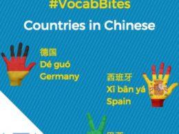 Çince Ülkeler