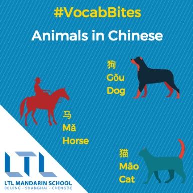 Çince Hayvanlar
