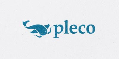 Çince Öğrenmek-Pleco