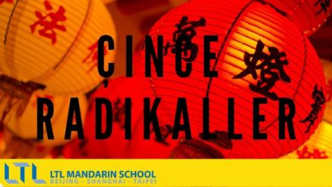Çince Radikaller : Çince Öğrenmenin Kolay Yolu
