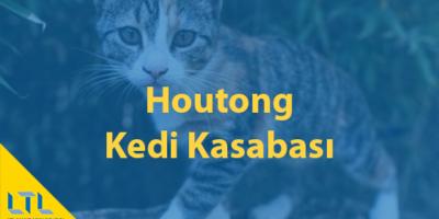Kedi Severler Bu Mekana Bayılacak – Houtong Kedi Kasabası