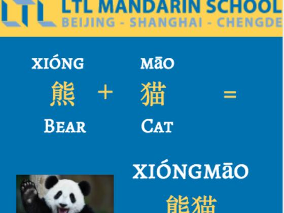 Panda- Learn Chinese