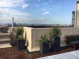 Pekin çatısı
