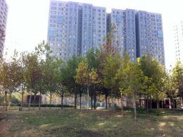 Pekin'de ortak daire Kompleksi